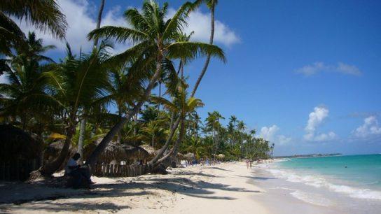 Тропічний кліматичний пояс – країни, опади, природні зони   тропічний клімат