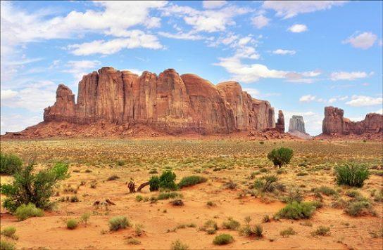 Пустелі і напівпустелі Північної Америки