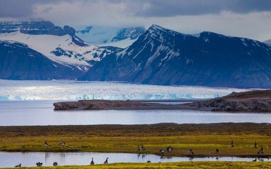 Континентальний клімат полярних широт