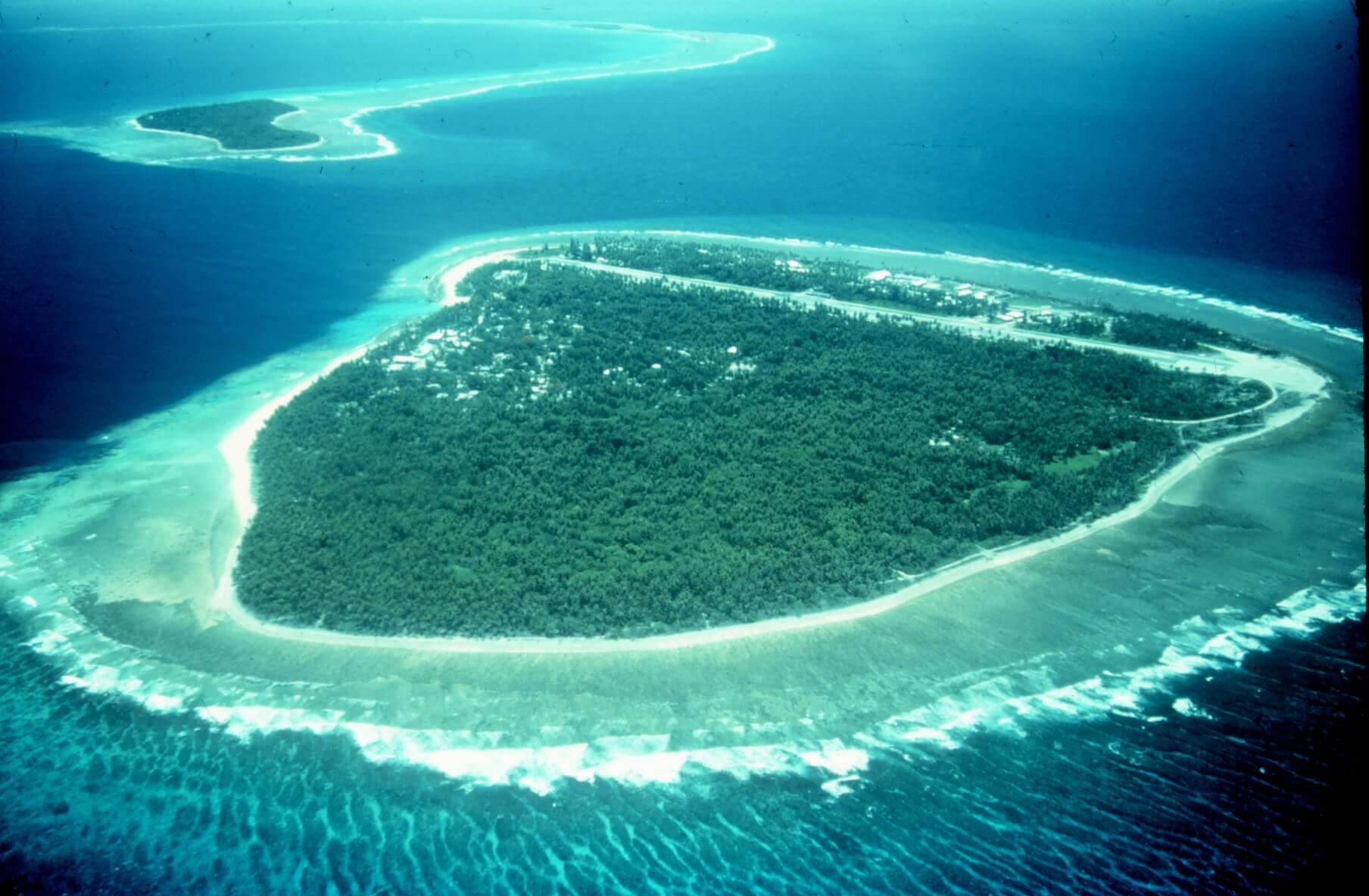 Як утворюються коралові острови – походження