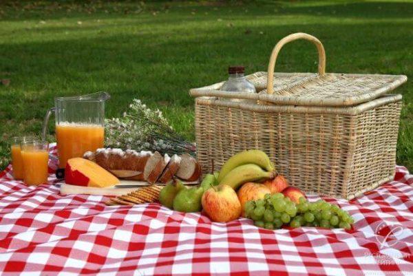 Еко пікнік: Влаштовуємо Екологічний пікнік влітку