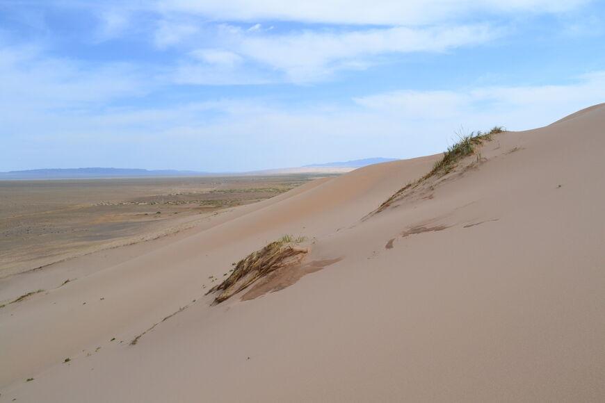 В пісках Хонгорин-Елс
