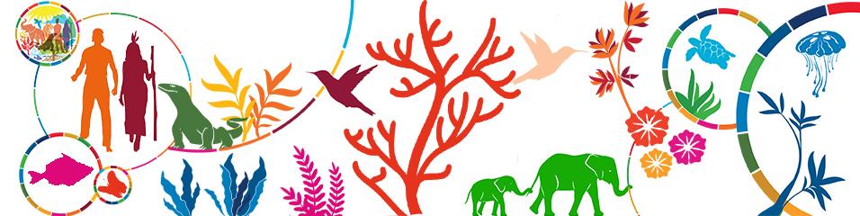 Приверженность ЮНЕСКО сохранению биоразнообразия