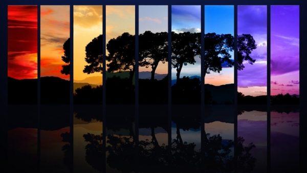 Чому вночі ми майже не розрізняємо кольори