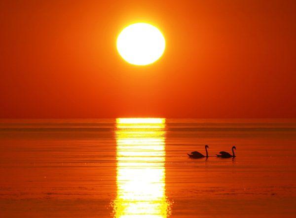 Чому сонце на заході часто буває червоним